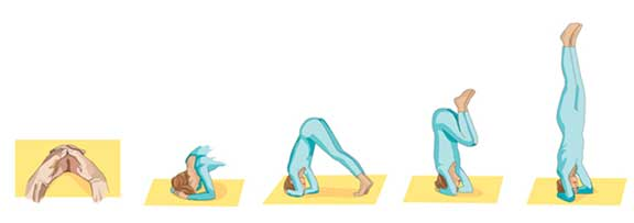 yoga head stand  pose