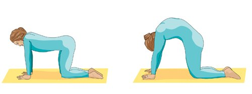Printable Yoga positions - the cat pose